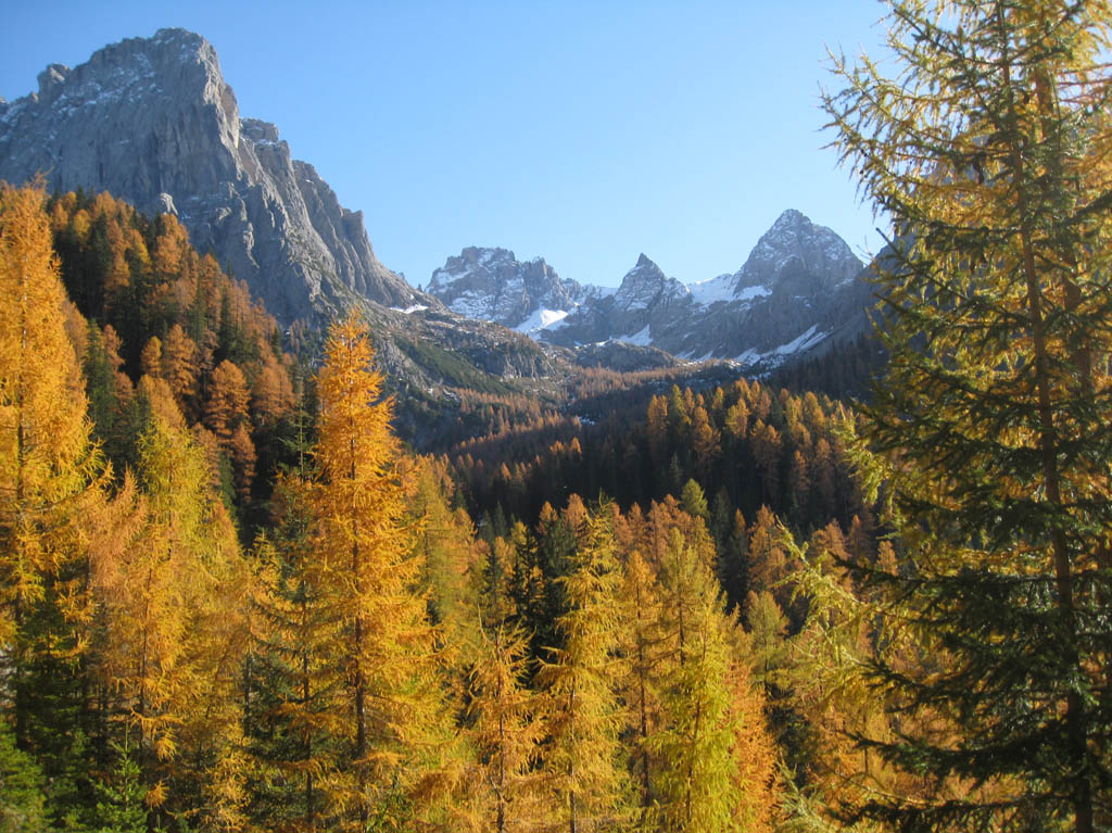 Goldener Herbst in Osttirol